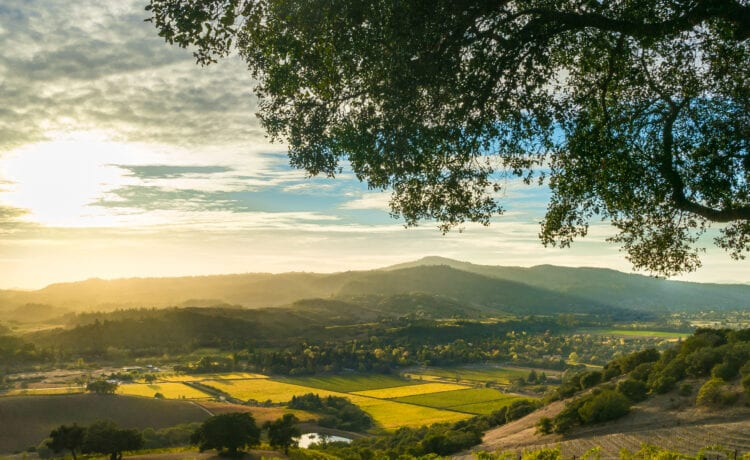 image of sonoma valley